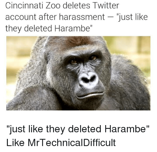 """Mrtechnicaldifficult: Cincinnati Zoo deletes Twitter  account after harassment just like  they deleted Harambe"""" """"just like they deleted Harambe""""  Like MrTechnicalDifficult"""