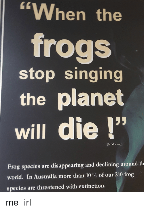 """Frog Species: CL  """"When the  frogs  stop singing  the planet  01  will die!  (Di Morrissey)  Frog species are disappearing and declining around th  world. In Australia more than 10 % of our 210 frog  species are threatened with extinction. me_irl"""