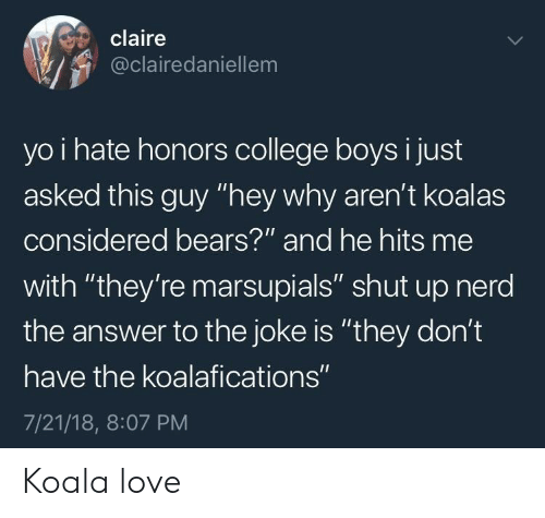 """koala: claire  @clairedaniellem  yo i hate honors college boys i just  asked this guy """"hey why aren't koalas  considered bears?""""' and he hits me  with """"they're marsupials"""" shut up nerd  the answer to the joke is """"they don't  have the koalafications""""  7/21/18, 8:07 PM Koala love"""