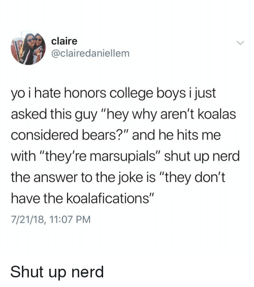 "College, Memes, and Nerd: claire  @clairedaniellem  yo i hate honors college boysi just  asked this guy ""hey why aren't koalas  considered bears?"" and he hits me  with ""they're marsupials"" shut up nerd  the answer to the joke is ""they don't  have the koalafications""  7/21/18, 11:07 PM Shut up nerd"