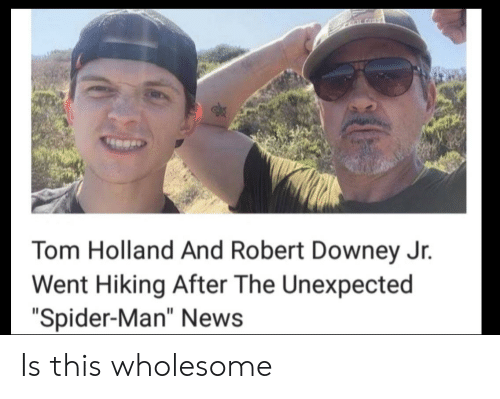 """Robert Downey Jr.: CLALGHT  Tom Holland And Robert Downey Jr.  Went Hiking After The Unexpected  """"Spider-Man"""" News Is this wholesome"""