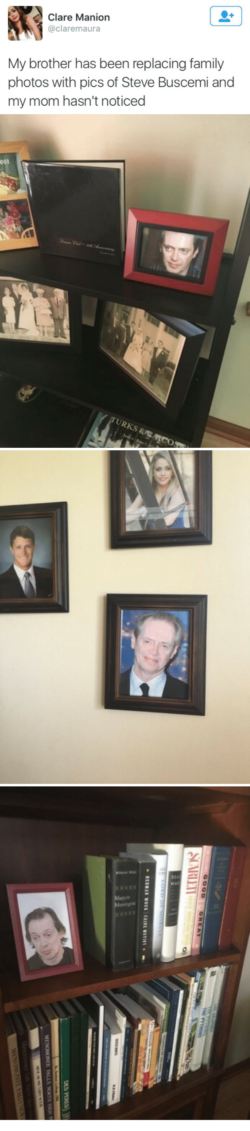 Family Photos: Clare Manion  @claremaura  My brother has been replacing family  photos with pics of Steve Buscemi and  my mom hasn't noticed   003