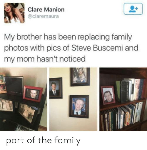 Family Photos: Clare Manion  @claremaura  My brother has been replacing family  photos with pics of Steve Buscemi and  my mom hasn't noticed part of the family