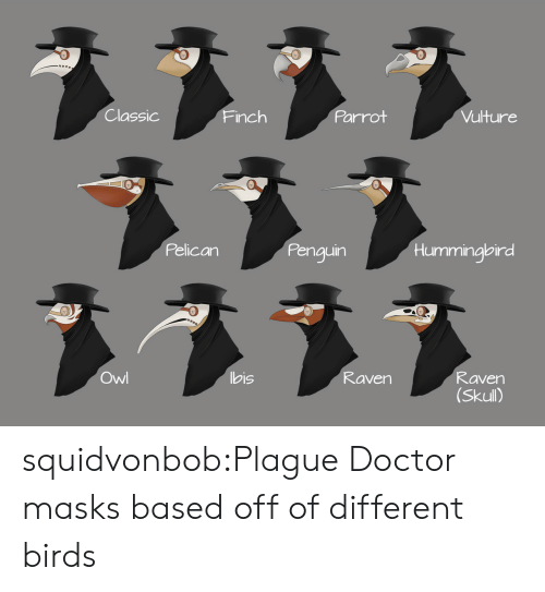 Hummingbird: Classic  Parrot  Vulture  Finch  Pelican  Penguin  Hummingbird  ヌ331  Owl  bis  Raven  Raven  (Skull) squidvonbob:Plague Doctor masks based off of different birds