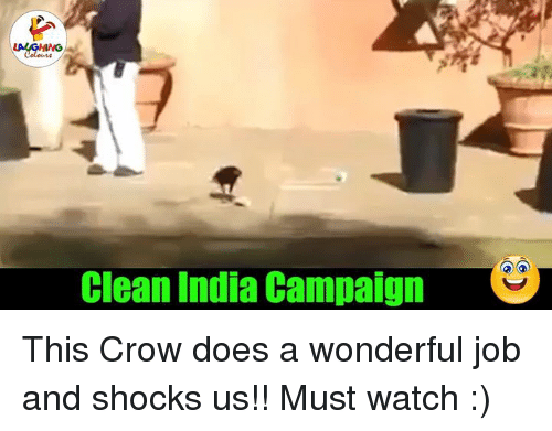 India, Indianpeoplefacebook, and Crow: Clean India Campaign  S This Crow does a wonderful job and shocks us!! Must watch :)