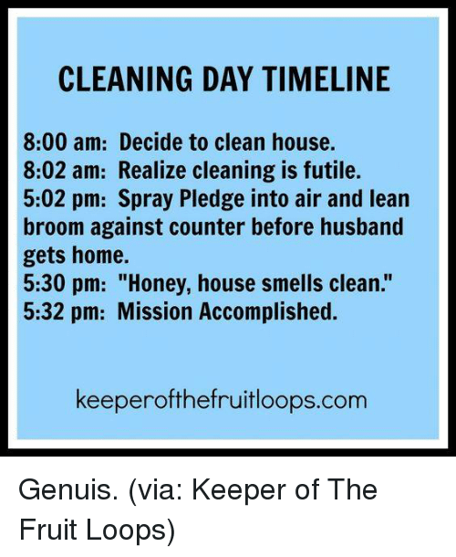 """Dank, Lean, and Home: CLEANING DAY TIMELINE  8:00 am: Decide to clean house.  8:02 am: Realize cleaning is futile.  5:02 pm: Spray Pledge into air and lean  broom against counter before husband  gets home.  5:30 pm: """"Honey, house smells clean.""""  5:32 pm: Mission Accomplished.  keeperofthefruitloops.com Genuis. (via: Keeper of The Fruit Loops)"""