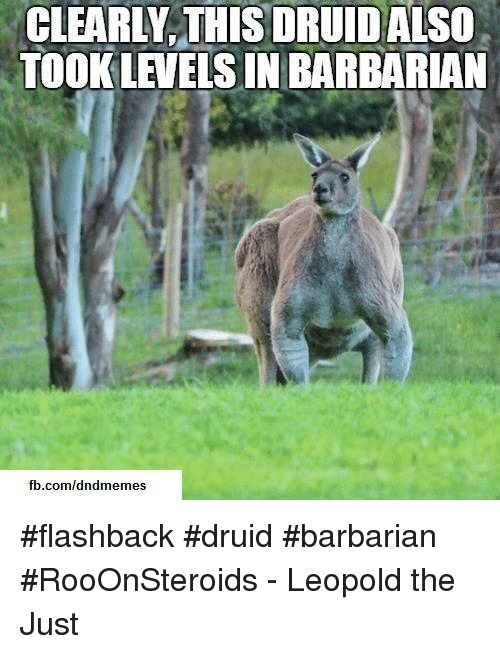 fb.com, DnD, and Com: CLEARLY,THIS DRUIDALSO  TOOK LEVELS IN BARBARIAN  fb.com/dndmemes #flashback #druid #barbarian #RooOnSteroids  - Leopold the Just