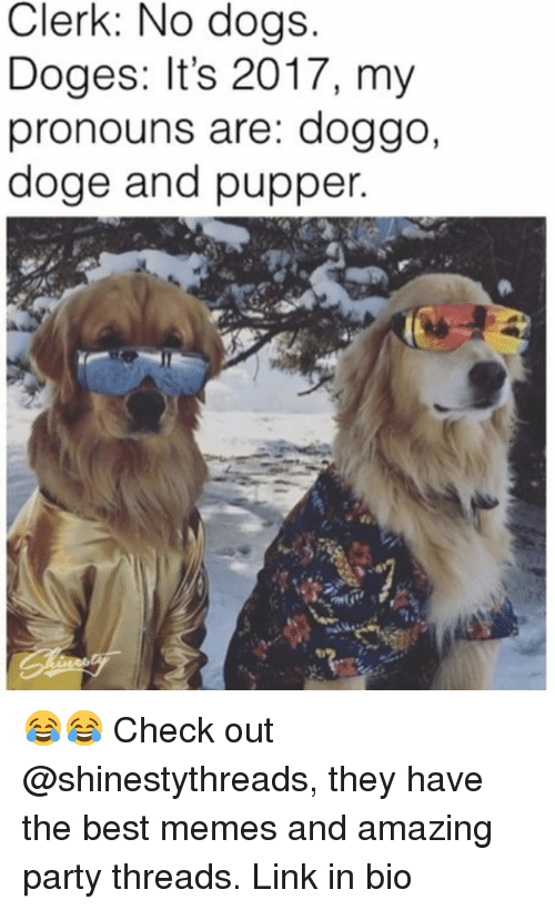 Dogee: Clerk: No dogs  Doges: It's 2017, my  pronouns are: doggo,  doge and pupper 😂😂 Check out @shinestythreads, they have the best memes and amazing party threads. Link in bio