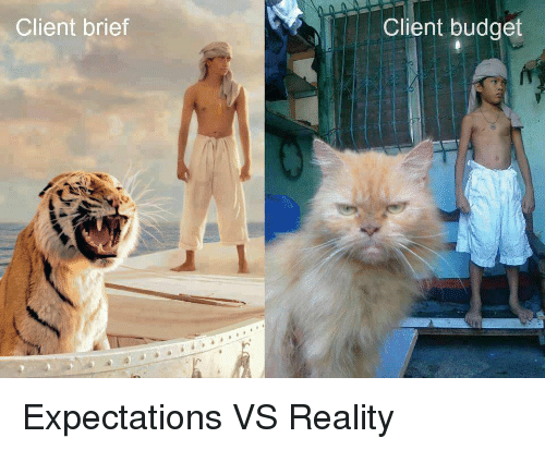 Funny, Budget, and Reality: Client brief  Client budget Expectations VS Reality