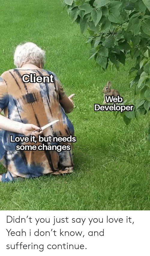 Web Developer: Client  Web  Developer  Love it, but needs  some changes Didn't you just say you love it, Yeah i don't know, and suffering continue.