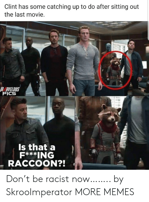 catching up: Clint has some catching up to do after sitting out  the last movie.  RVELOUS  PICS  Is that a  F***ING  RACCOON?! Don't be racist now…….. by SkrooImperator MORE MEMES