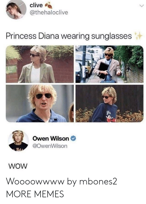 Princess Diana: clive s  @thehaloclive  Princess Diana wearing sunglasses  Owen Wilson  @OwenWilson  WOW Woooowwww by mbones2 MORE MEMES