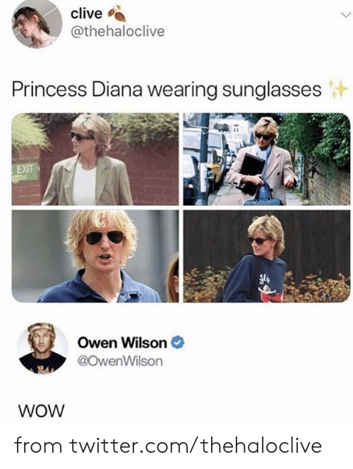 Princess Diana: clive  @thehaloclive  Princess Diana wearing sunglasses  EXIT  Owen Wilson  @OwenWilson  WOW from twitter.com/thehaloclive