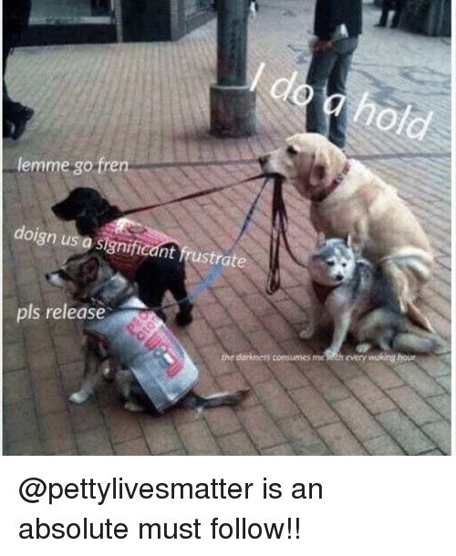 Memes, Sith, and 🤖: clo  lemme go fren  doign us  a significant frustrate  pls release  dorkness consumes me sith every wakirg hous @pettylivesmatter is an absolute must follow!!