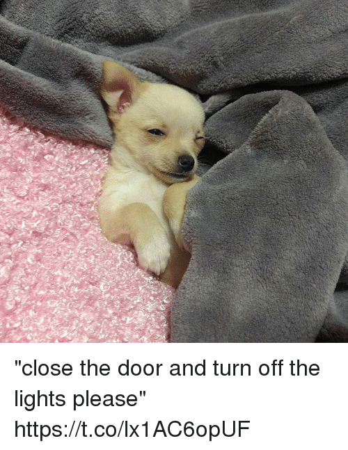 """turn offs: """"close the door and turn off the lights please"""" https://t.co/lx1AC6opUF"""