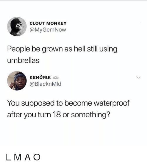 Memes, Monkey, and Hell: CLOUT MONKEY  @MyGemNow  People be grown as hell still using  umbrellas  @BlacknMld  You supposed to become waterproof  after you turn 18 or something? L M A O