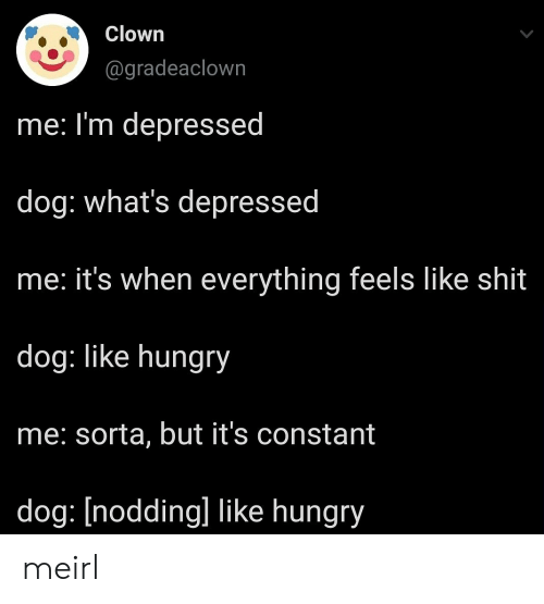 Im Depressed: Clown  @gradeaclown  me: I'm depressed  dog: what's depressed  he: it's when everything feels like shit  dog: like hungry  me: sorta, but it's constant  dog: [nodding] like hungry meirl