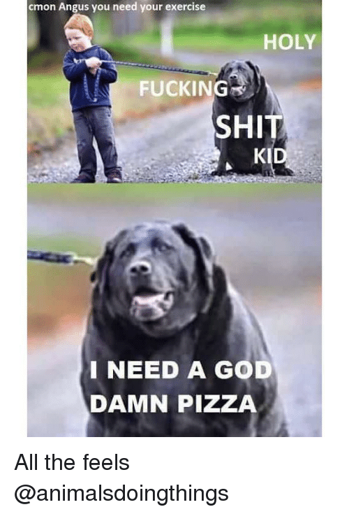 Fucking, God, and Pizza: cmon Angus you need your exercise  HOLY  FUCKING  SHIT  KID  INEED A GOD  DAMN PIZZA All the feels @animalsdoingthings