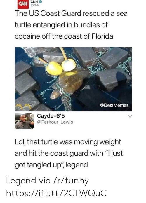 """Coast Guard: CNN  @CNN  The US Coast Guard rescued a sea  turtle entangled in bundles of  cocaine off the coast of Florida  @BestMemes  Cayde-6'5  @Parkour_Lewis  Lol, that turtle was moving weight  and hit the coast guard with """"just  got tangled up', legend Legend via /r/funny https://ift.tt/2CLWQuC"""