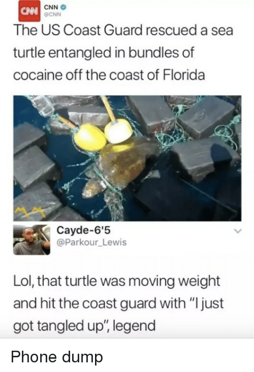 """Coast Guard: CNN  OCNN  The US Coast Guard rescued a sea  turtle entangled in bundles of  cocaine off the coast of Florida  Cayde-6'5  @Parkour_Lewis  Lol, that turtle was moving weight  and hit the coast guard with """"ljust  got tangled up, legend Phone dump"""
