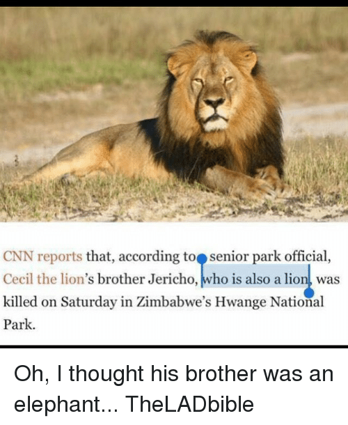 Lions: CNN reports that, according to senior park official,  Cecil the lion's brother Jericho, who is also a lion was  killed on Saturday in Zimbabwe's Hwange National  Park. Oh, I thought his brother was an elephant... TheLADbible