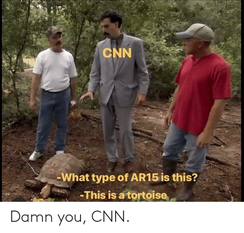 Ar15: CNN  What type of AR15 is this?  This is a tortoise Damn you, CNN.