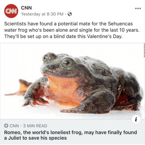 juliet: CNN  Yesterday at 8:30 PM  CNN  Scientists have found a potential mate for the Sehuencas  water frog who's been alone and single for the last 10 years.  They'll be set up on a blind date this Valentine's Day.  CNN-3 MIN READ  Romeo, the world's loneliest frog, may have finally found  a Juliet to save his species