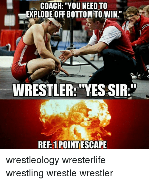 "Coaching: COACH: ""YOU NEED TO  EXPLODE OFF BOTTOM TO WIN""  WRESTLER: ""YES SIR.""  REF: 1 POINTESCAPE wrestleology wresterlife wrestling wrestle wrestler"