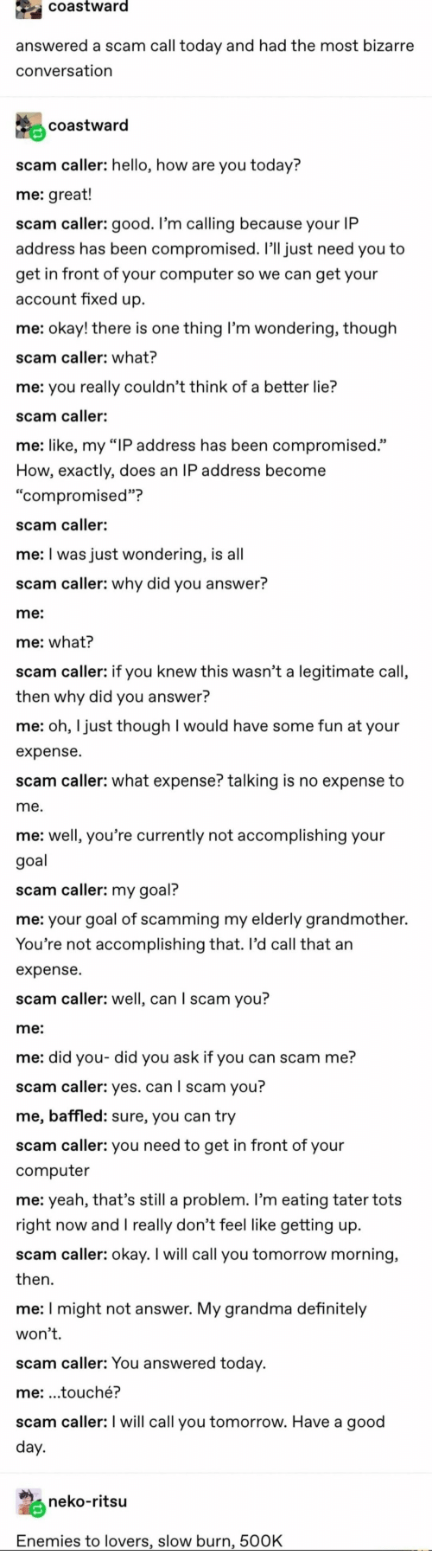 "Touche: coastward  answered a scam call today and had the most bizarre  conversation  coastward  scam caller: hello, how are you today?  me: great!  scam caller: good. I'm calling because your IP  address has been compromised. I'll just need you to  get in front of your computer so we can get your  account fixed up  me: okay! there is one thing I'm wondering, though  scam caller: what?  me: you really couldn't think of a better lie?  scam caller:  me: like, my ""IP address has been compromised.""  How, exactly, does an IP address become  ""compromised""?  scam caller:  me: I was just wondering, is all  scam caller: why did you answer?  me:  me: what?  scam caller: if you knew this wasn't a legitimate call,  then why did you answer?  me: oh, I just though I would have some fun at your  expense  scam caller: what expense? talking is no expense to  me.  me: well, you're currently not accomplishing your  goal  scam caller: my goal?  me: your goal of scamming my elderly grandmother.  You're not accomplishing that. Il'd call that an  expense  scam caller: well, can I scam you?  me:  me: did you- did you ask if you can scam me?  scam caller: yes. can I scam you?  me, baffled: sure, you can try  scam caller: you need to get in front of your  computer  me: yeah, that's still a problem. I'm eating tater tots  right now andI really don't feel like getting up  scam caller: okay. I will call you tomorrow morning,  then  me: I might not answer. My grandma definitely  won't.  scam caller: You answered today.  me: .touché?  scam caller: I will call you tomorrow. Have a good  day.  neko-ritsu  Enemies to lovers, slow burn, 500K"