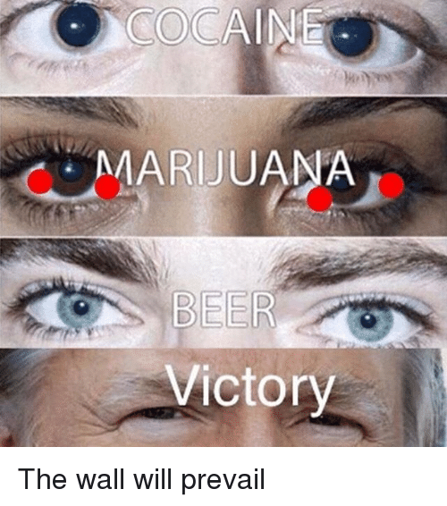 Beer, Memes, and Cocaine: COCAINE  MARIJUANA  BEER  Victory The wall will prevail
