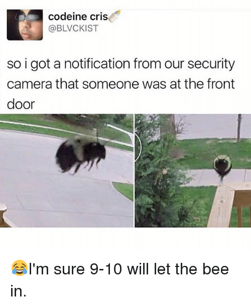 Memes, Camera, and Codeine: codeine cris  @BLVCKIST  so i got a notification from our security  camera that someone was at the front  door 😂I'm sure 9-10 will let the bee in.