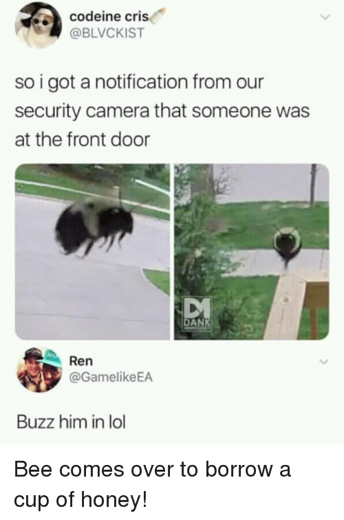 security camera: codeine cris  @BLVCKIST  so i got a notification from our  security camera that someone was  at the front door  MVA  DAN  Ren  @GamelikeEA  Buzz him in lol Bee comes over to borrow a cup of honey!