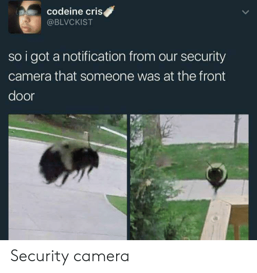 security camera: codeine criS  @BLVCKIST  so i got a notification from our security  camera that someone was at the front  door Security camera