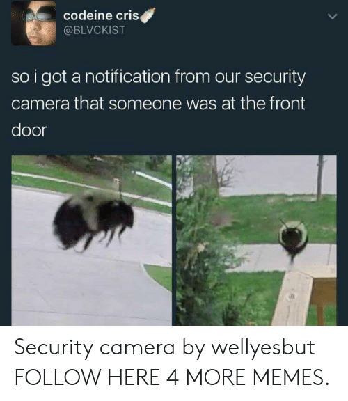 security camera: codeine criS  @BLVCKIST  so i got a notification from our security  camera that someone was at the front  door Security camera by wellyesbut FOLLOW HERE 4 MORE MEMES.