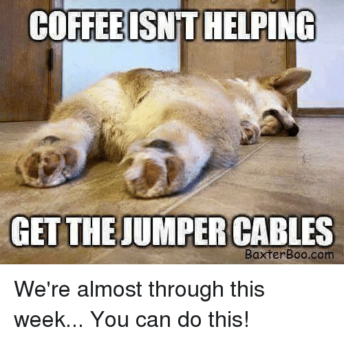 Jumper Cables Meme : Boo meme don t tell me you miss re outside
