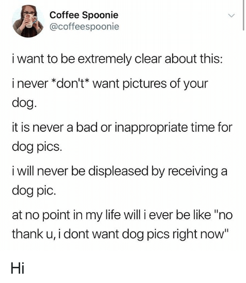 """Bad, Be Like, and Life: Coffee Spoonie  @coffeespoonie  i want to be extremely clear about this:  i never """"don't* want pictures of your  dog  it is never a bad or inappropriate time for  dog pics  i will never be displeased by receiving a  dog pic.  at no point in my life will i ever be like """"ndo  thank u, i dont want dog pics right now"""" Hi"""