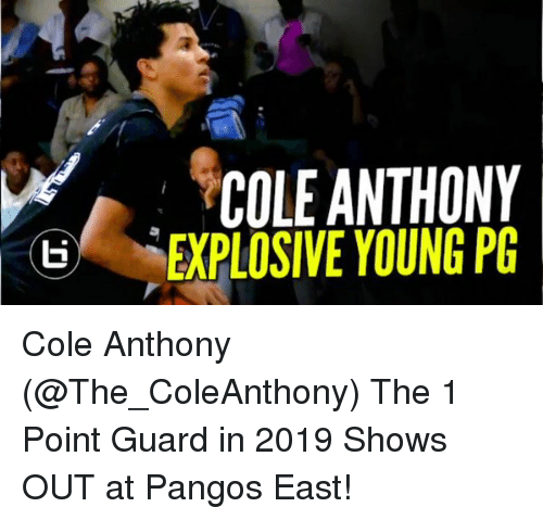 Memes, 🤖, and East: COLE ANTHONY  ti EXPLOSIVE YOUNG PG Cole Anthony (@The_ColeAnthony) The 1 Point Guard in 2019 Shows OUT at Pangos East!