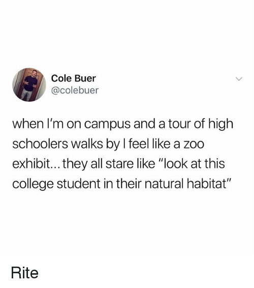 "College, Memes, and 🤖: Cole Buer  @colebuer  when I'm on campus and a tour of high  schoolers walks by l feel like a zoo  exhibit...they all stare like ""look at this  college student in their natural habitat"" Rite"