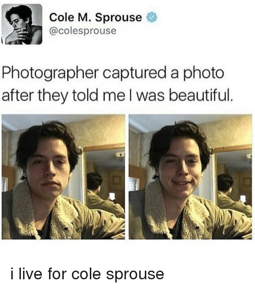 Tumblr, Cole Sprouse, and Coles: Cole M. Sprouse  @colesprouse  Photographer captured a photo  after they told me I was beautiful i live for cole sprouse