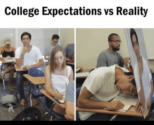 Vs Reality: College Expectations vs Reality