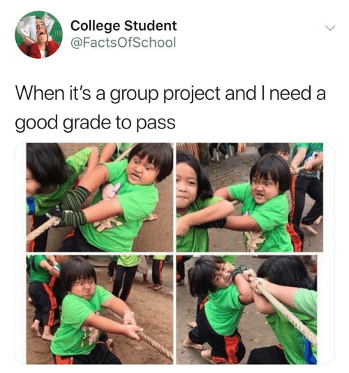 Group Project: College Student  @FactsOfSchool  When it's a group project and I need a  good grade to pass