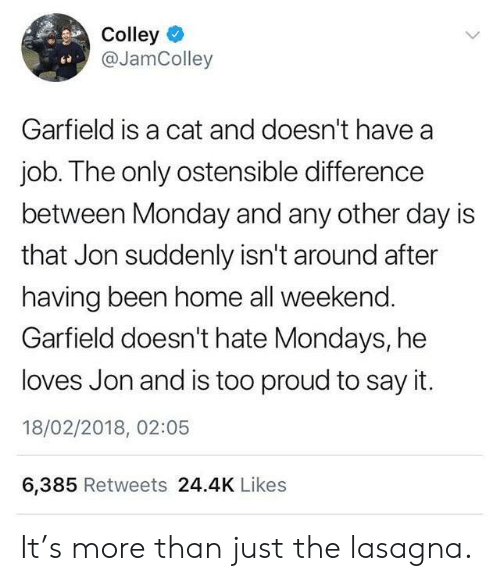 Mondays: Colley  @JamColley  ce  Garfield is a cat and doesn't have a  job. The only ostensible difference  between Monday and any other day is  that Jon suddenly isn't around after  having been home all weekend  Garfield doesn't hate Mondays, he  loves Jon and is too proud to say it.  18/02/2018, 02:05  6,385 Retweets 24.4K Likes It's more than just the lasagna.