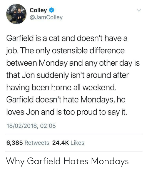 Garfield: Colley  @JamColley  Garfield is a cat and doesn't have a  job. The only ostensible difference  between Monday and any other day is  that Jon suddenly isn't around after  having been home all weekend.  Garfield doesn't hate Mondays, he  loves Jon and is too proud to say it.  18/02/2018, 02:05  6,385 Retweets 24.4K Likes Why Garfield Hates Mondays