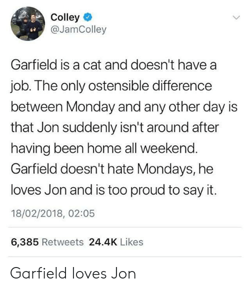 Garfield: Colley  @JamColley  Garfield is a cat and doesn't have a  job. The only ostensible difference  between Monday and any other day is  that Jon suddenly isn't around after  having been home all weekend.  Garfield doesn't hate Mondays, he  loves Jon and is too proud to say it.  18/02/2018, 02:05  6,385 Retweets 24.4K Likes Garfield loves Jon