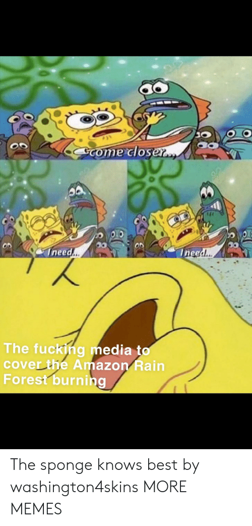 Ineed: Come closer..  Ineed..  Ineed..  The fucking media to  cover the Amazon Rain  Forest burning The sponge knows best by washington4skins MORE MEMES