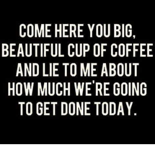 Beautiful, Memes, and Coffee: COME HERE YOU BIG.  BEAUTIFUL CUP OF COFFEE  AND LIE TO ME ABOUT  HOW MUCH WERE GOING  TO GET DONE TODAY