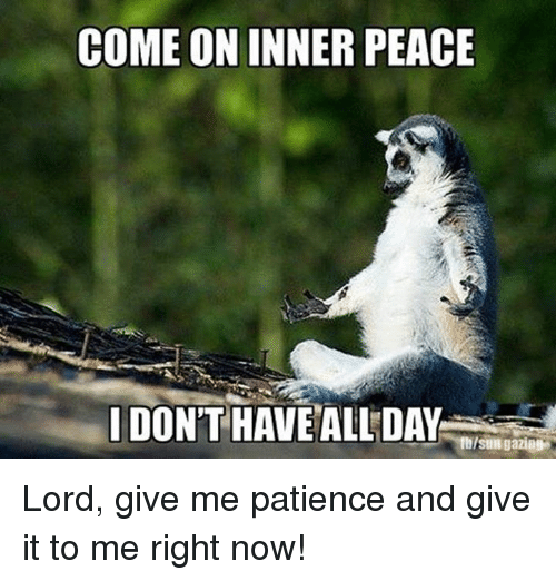 Image Gallery: i need patience meme