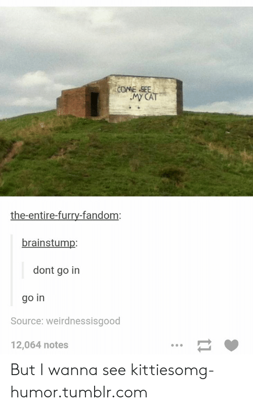 furry fandom: COME .SEE  the-entire-furry-fandom:  brainstump:  dont go in  go in  Source: weirdnessisgood  12,064 notes But I wanna see kittiesomg-humor.tumblr.com