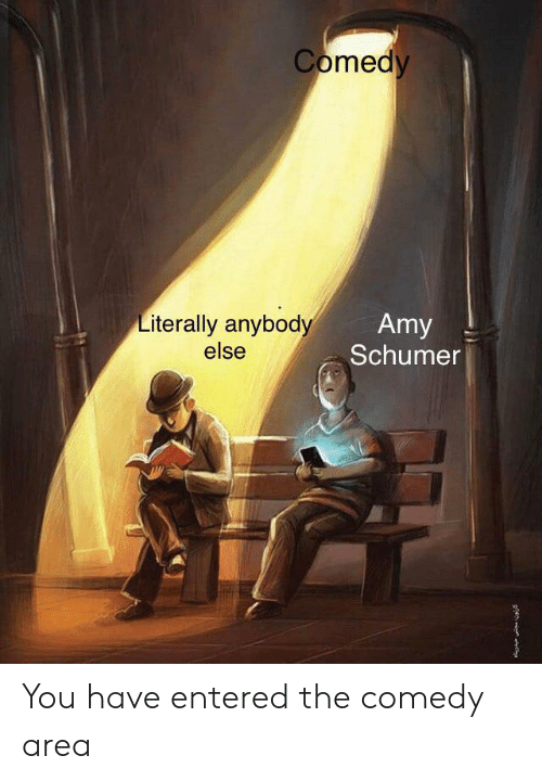 Amy Schumer: Comedy  Literally anybody  else  Amy  Schumer You have entered the comedy area