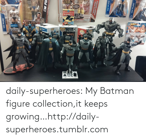 "Cm Punk: COMICS TTL  POP HE 51)  CM PUNK  CM PU  ""MACHO MAN""  RANDY SAVAGE  CM PUNK  CM PUNK daily-superheroes:  My Batman figure collection,it keeps growing…http://daily-superheroes.tumblr.com"
